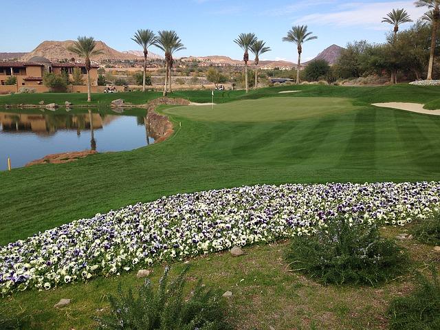 ゴルフコースの画像です。